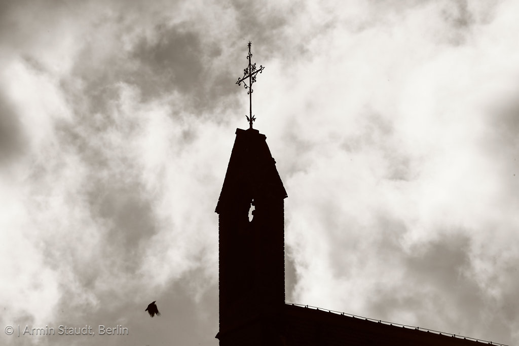 silhouette of a steeple with flying pigeon