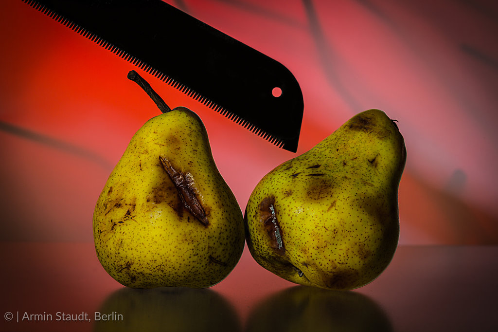 stilllife with two old pears and a saw on a red vibrant backgrou